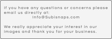 If you have any questions or concerns please email us directly at: Info@Subisnaps.com We really appreciate your interest in our images and thank you for your business.